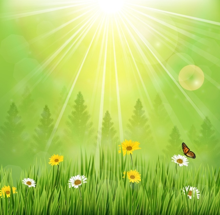 green butterfly: Spring background with flowers and butterflies in meadow and pine trees
