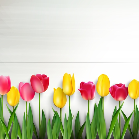 tulips: Colorful tulips on white wooden table Stock Photo