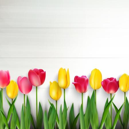 tulipan: Kolorowe tulipany na białym drewnianym stole