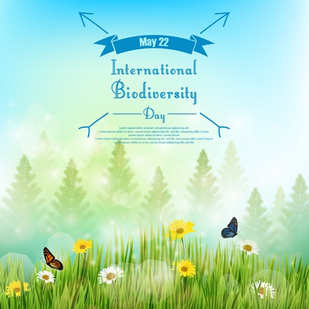 biodiversity: Biodiversity background with palm tree and flowers in grass on blue sky background Stock Photo
