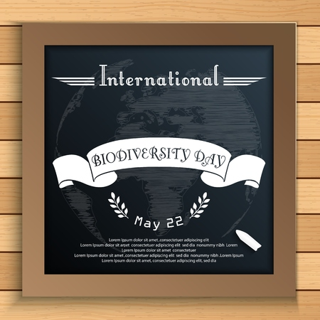 biodiversity: Vector illustration of Biodiversity international day with Earth and white ribbon on blackboard Illustration
