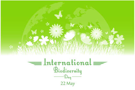 biodiversity: Vector illustration of International Biodiversity Day background with flower, butterflies and grass silhouette