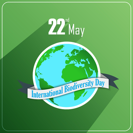 biodiversity: Vector illustration of International Biodiversity Day concept with globe and ribbon on green background