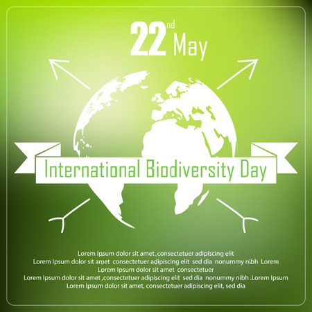 biodiversity: International biodiversity day background with earth and ribbon a shape typography