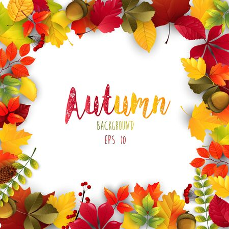 Autumn leaves frame isolated background