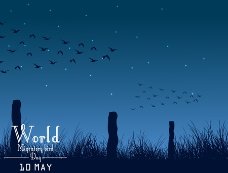 migratory: Migratory birds day on night background Illustration