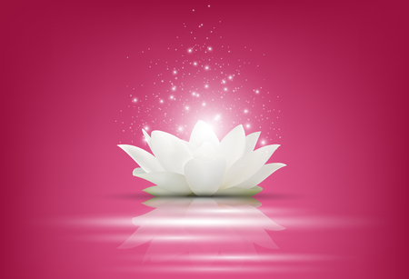 Vector illustration of Magic White Lotus flower on pink background Vectores