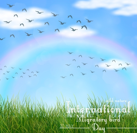 wind dramatic sky: Vector illustration of Wild nature with green grass and flying birds
