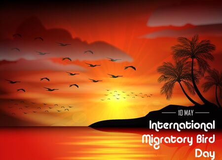 migratory: Birds migratory day of silhouettes bird on sunset background Stock Photo