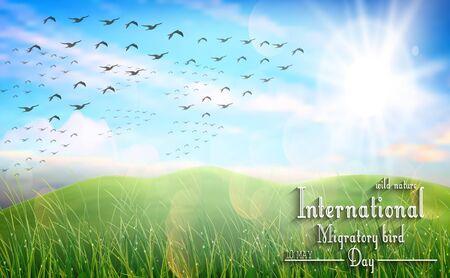 ave del paraiso: prado hermoso del resorte para el día de las aves migratorias