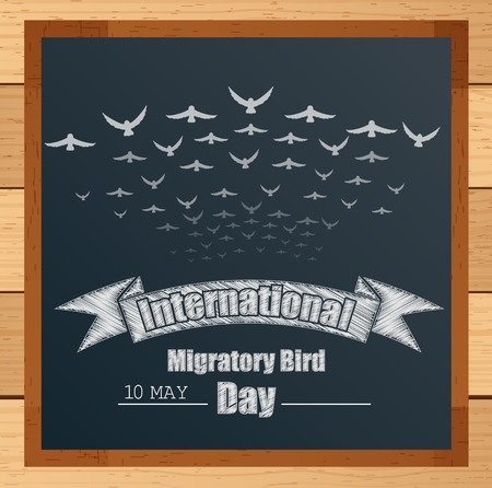 migratory birds: Migratory birds mechanism with ribbon and flying birds written by chalk on blackboard