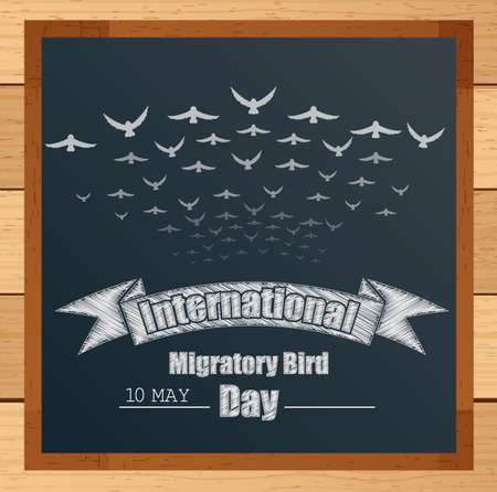 migratory: Vector illustration of Migratory birds mechanism with ribbon and flying birds written by chalk on blackboard Illustration