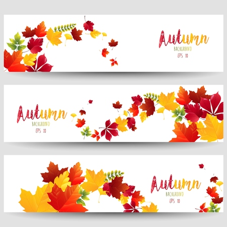 leafage: Colorful autumn leaves of banners Stock Photo