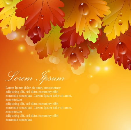 autumnal: Vector illustration of Bright beautiful leaves with autumnal abstract backgrounds