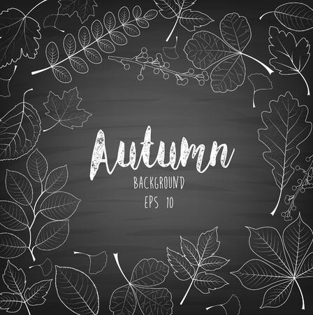 Vector illustration of Autumn leaves written with chalk on black chalkboard