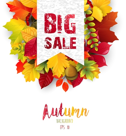 Vector illustration of Autumn leaves with sales banner