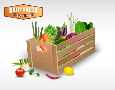 crates: Fresh vegetable in wooden crates on a white background Illustration