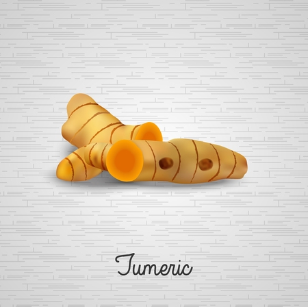 tumeric: Tumeric plants Illustration