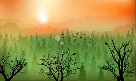 Mountain forest background at sunset Illustration