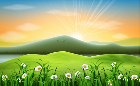 lake sunset: Mountain landscape background with daisies flower