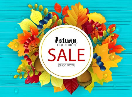 Autumn sale banner Stock Photo