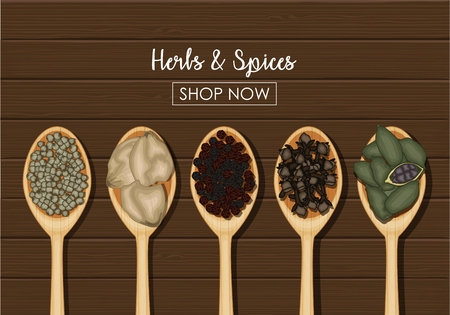 Vector illustration of Spices in wooden spoons over wooden background