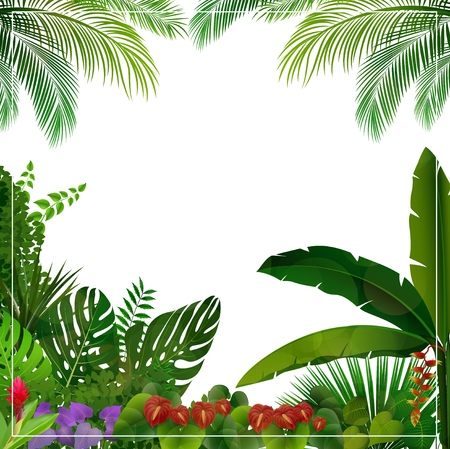 Vector illustration of Tropical jungle on white background