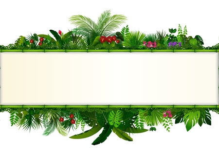 Tropical leaves background. Rectangle plant bamboo frame with space for text. Tropical foliage with horizontal banner