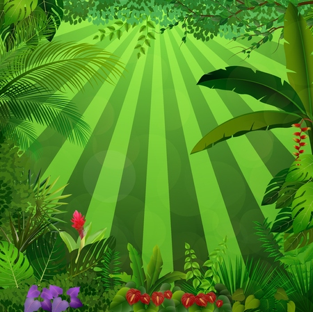 Vector illustration of Lighting in jungle Ilustração