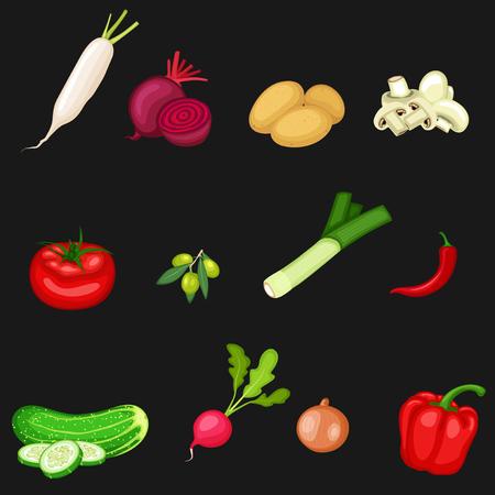 Vector illustration of Collection of vegetables on a black background Illustration