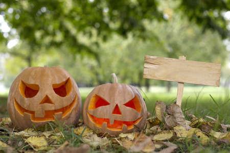 wood spider: Halloween pumpkin on a glade Stock Photo