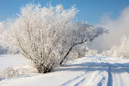 hermoso paisaje nevado invierno en Rusia Foto de archivo