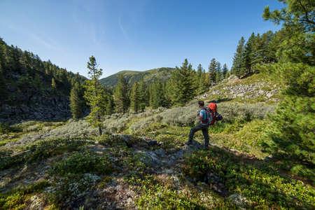 siberia: The mountains of Siberia Khamar Daban in Russia