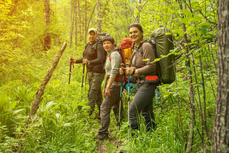 hikers explore the woods following the path to the top Stock Photo