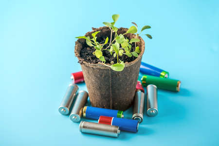 Used alkaline batteries lie with sprouted green plants. The concept of environmental pollution with toxic household waste