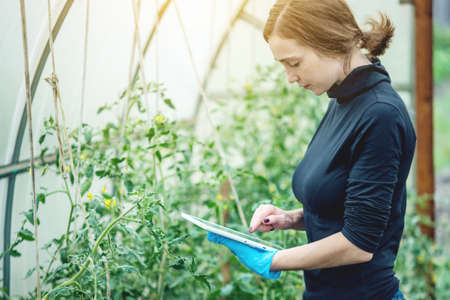 Woman specialist agronomist holding a tablet. Concept of environmentally friendly production on farms Stock Photo