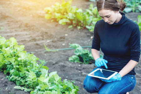 Woman specialist agronomist holding a tablet. Concept quality control of production on farms Archivio Fotografico