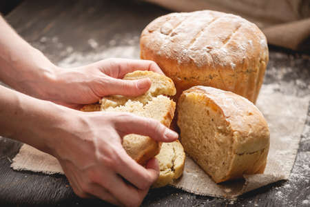 Women's hands breaking homemade natural fresh bread with a Golden crust on a napkin on an old wooden background. The concept of baking bakery products