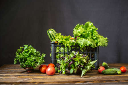 Black box with fresh vegetables and green salad on a dark background. Organic raw products grown on the farm.