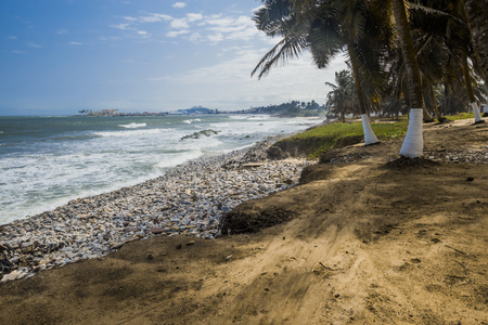 Wild beach and sea shore in Ghana. Coconut trees, roots and stones on a foreground. Elmina Castle on a background. Heavy sea and blue sky.