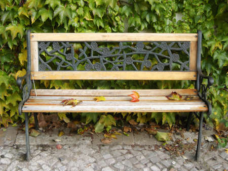 prenzlauerberg: Autumn Still Life