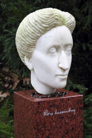 Rosa Luxemburgo Foto de archivo - 12754200