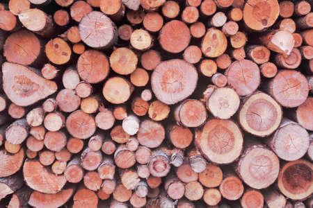sustainably: Firewood Stock Photo