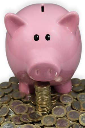 Euro piggy bank Stock Photo - 14943886