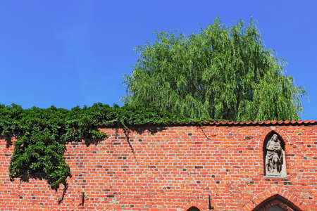 castle conditioning: Stralsund city wall