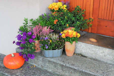 brandenburg home ownership: House entrance with flowers