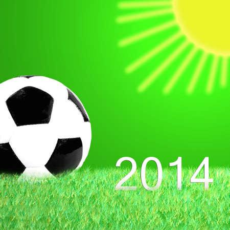 soccer wm: F?tbol 2014