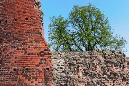 Castle Wall photo