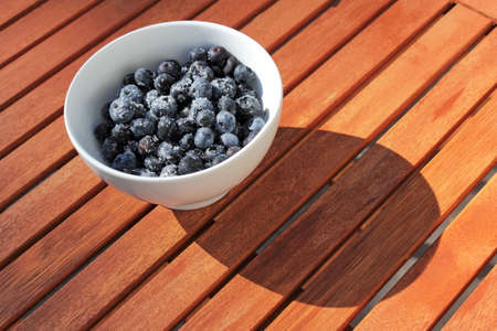 sugared blueberries Stock Photo - 22779501