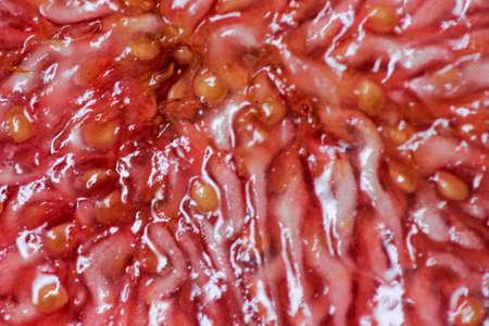 flesh: Fig fruit flesh